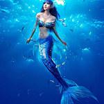 美人鱼直播免费资源版