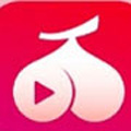 荔枝视频污视频免费观看