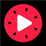 西瓜视频app下载