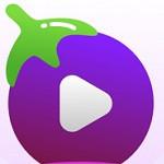 茄子视频污app下载