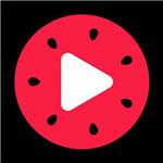 西瓜视频vip破解版